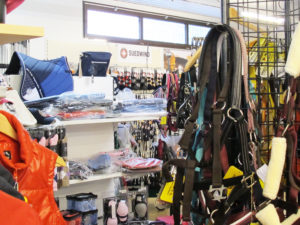 sport outlet uslar_pferdesport_reitsport_carboo-shop.de_3